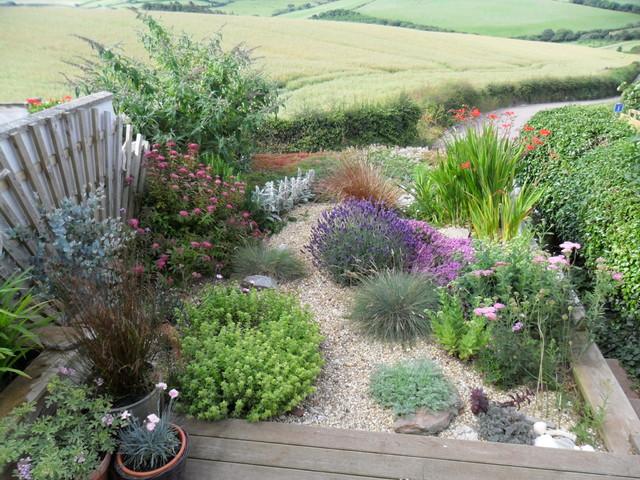 small south facing garden beach style garden - Beach Style Garden Ideas