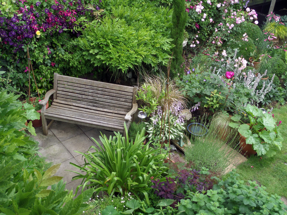 Small town garden with lawn - Traditional - Landscape ...
