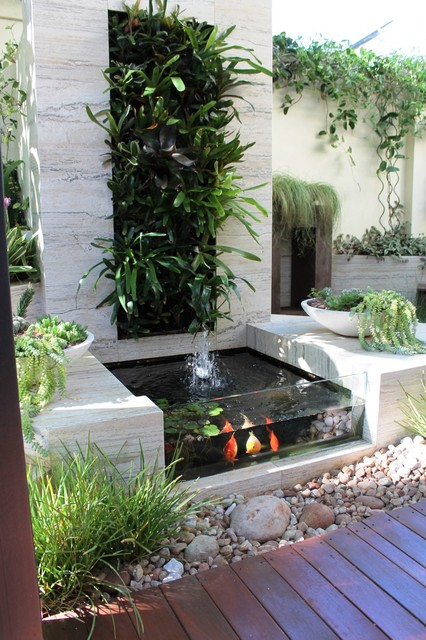 South fremantle courtyard contemporary garden perth for Courtyard landscaping perth