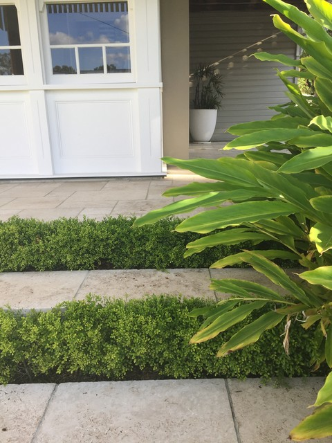 Mid-sized tropical front yard partial sun formal garden in Brisbane with natural stone pavers.