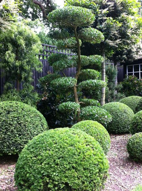 Topiary & Niwaki contemporary-garden