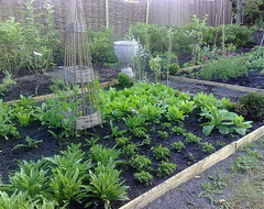 Potager or traditional vegetable garden traditional-landscape