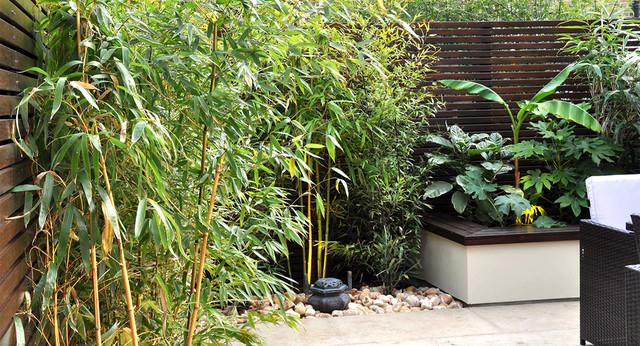 Urban Jungle Garden In Clapham