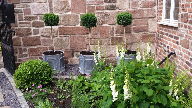 Walled Courtyard Garden For Mews Cottage Country