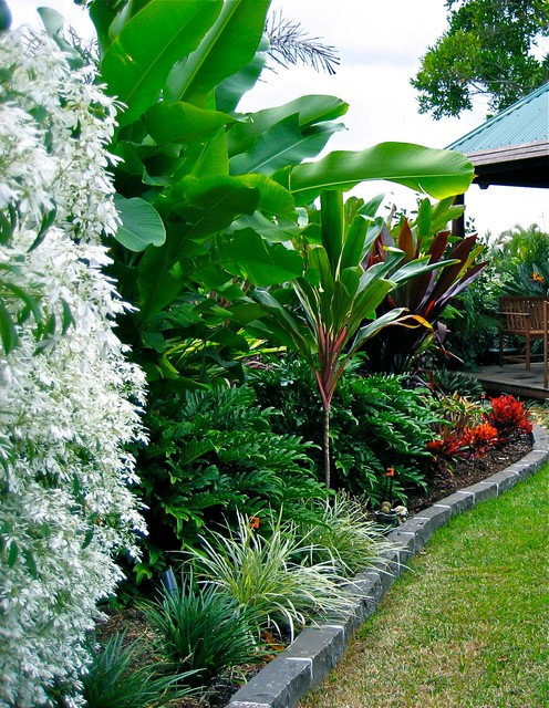 wynnum - tropical - garden - brisbane