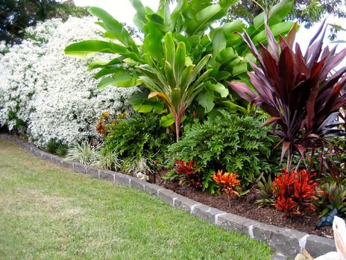 Utopia-Landscape-Design-plants