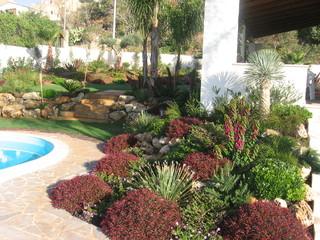 Foto giardino con piante mediterranee piscina e terrazzamenti - Piante mediterranee da giardino ...