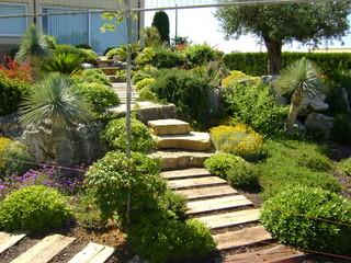 Foto terrazzamenti con piante mediterranee - Terrazzamenti giardino ...