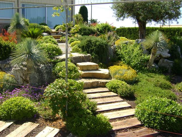 Foto terrazzamenti con piante mediterranee for Piante mediterranee da giardino