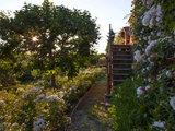 Guida Houzz: Come Riconoscere la Zona Climatica del tuo Giardino (14 photos) - image  on http://www.designedoo.it