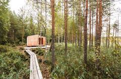 Pénurie mondiale de bois : quelles conséquences sur le secteur ?