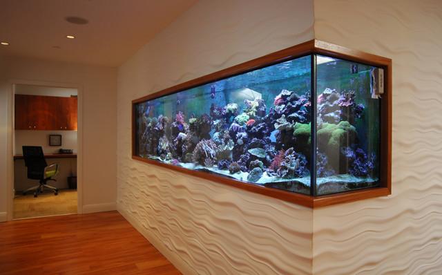 Aquarium - Fish tank partition wall ...