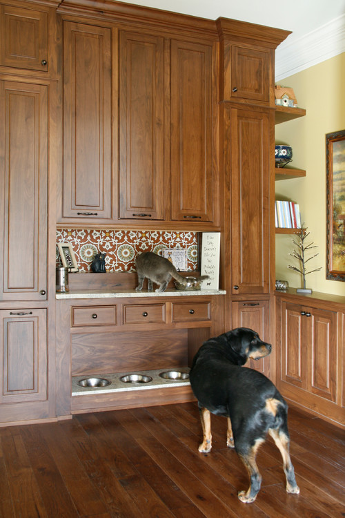 high feeding station on the shelf above just so the dogs dont eat - Cat Room Design Ideas