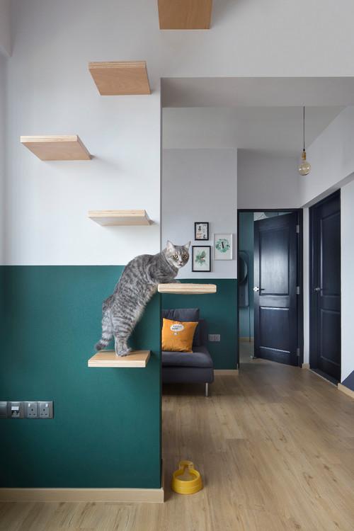 étagères chat