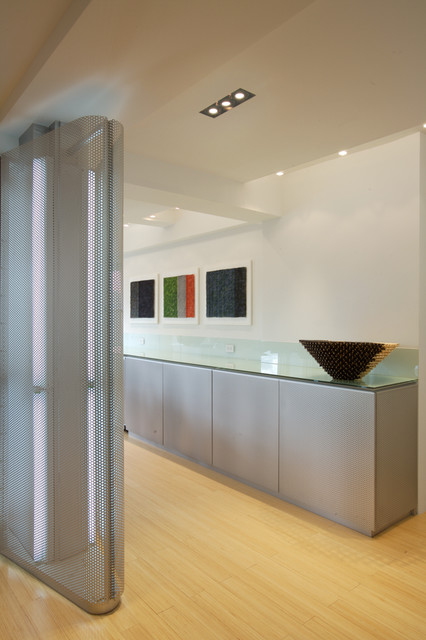Greenbaum Apartment contemporary-hall