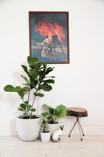 Houzz Melbourne eclectico-recibidor-y-pasillo