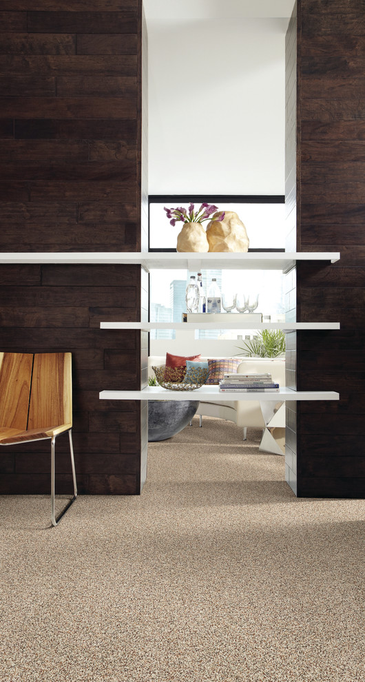 Example of a trendy carpeted hallway design in Jacksonville with white walls