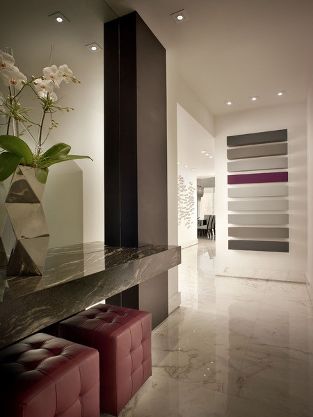 Contemporary Hall Miami PepeCalderinDesign - Miami modern - interior designers - Hollywood penthouse contemporary-hall