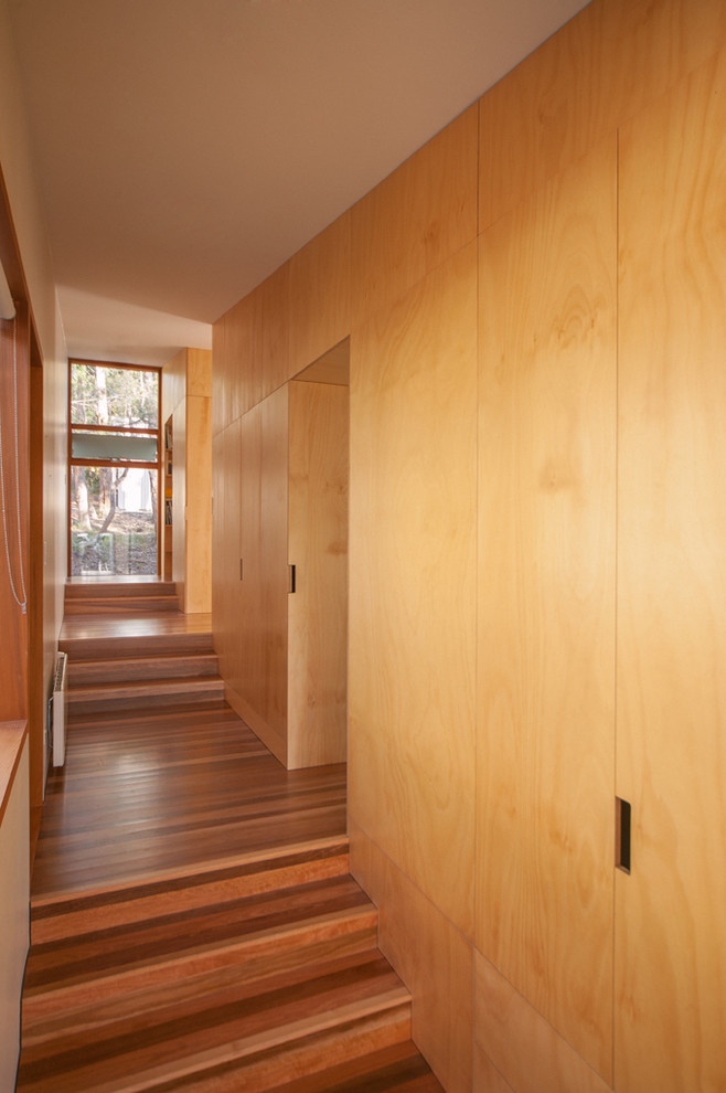 Contemporary hallway in Hobart with medium hardwood floors.