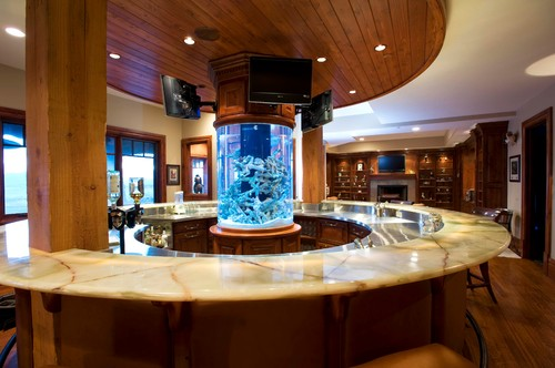 traditional basement Fabulous Fish Tanks