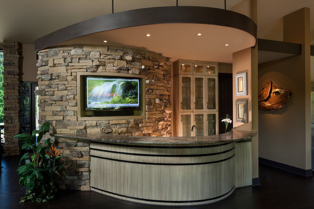 Wet Bar/Social Media/Entertainment Space Contemporary Home Bar