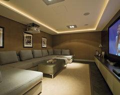 Contemporary contemporary-home-theater