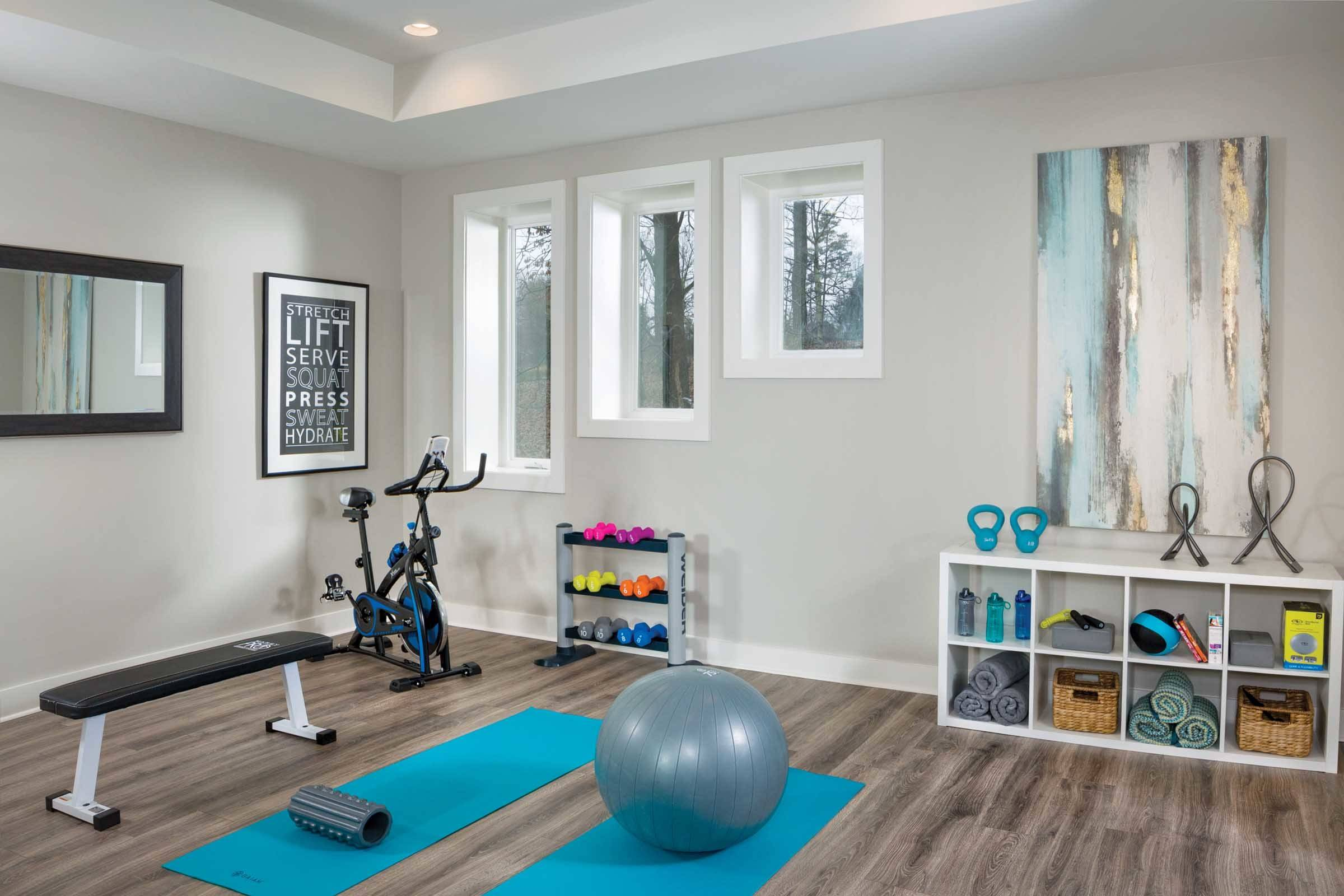 17 Beautiful Home Gym Pictures & Ideas - September, 17  Houzz
