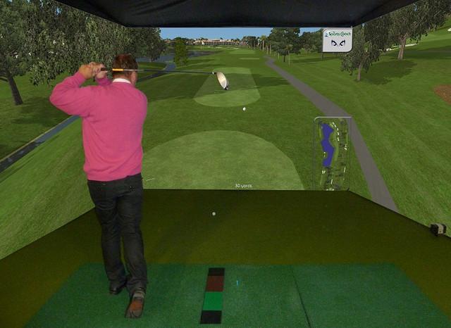 Custom indoor golf rooms home gym phoenix by indoor for Indoor golf design