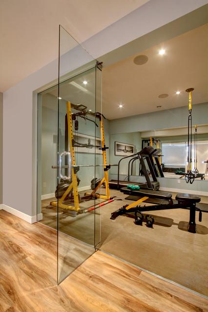 Home Gym Glass Entrances Contemporary Home Gym