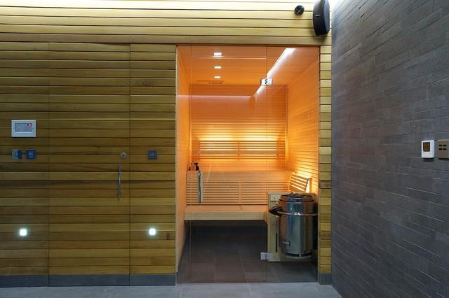 Indoor Luxury Swimming Pool Surrey Modern Home Gym