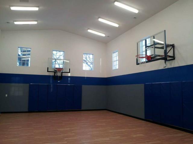 Indoor Sport Court Home Gym Minneapolis By Platinum