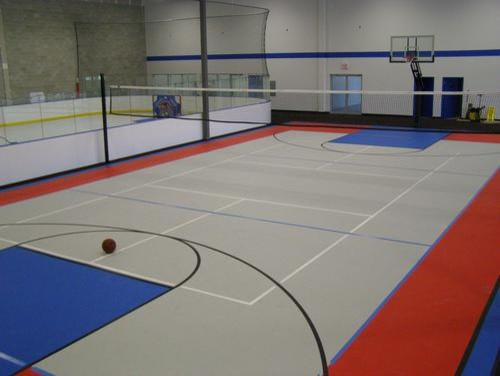 Indoor Sport Courts Traditional Home Gym Other Metro