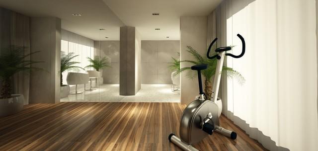 Penthouse contemporary-home-gym