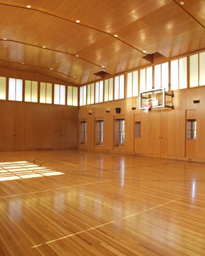 Private Indoor Basketball Court Traditional Home Gym