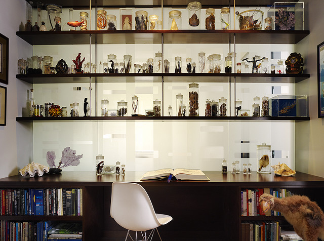 Schwartz and Architecture eclectic-home-office