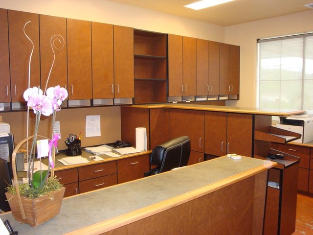 Commercial Office Cabinets modern-home-office