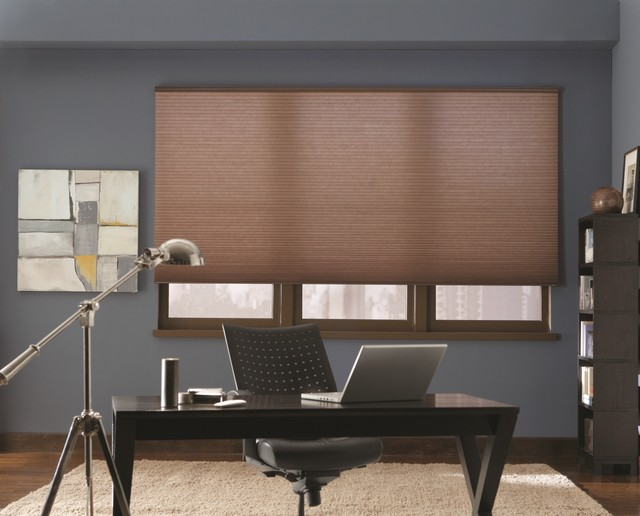 DiamondCell Light Filtering Honeycomb Shades Contemporary Home Office