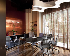 Executive Office modern-home-office