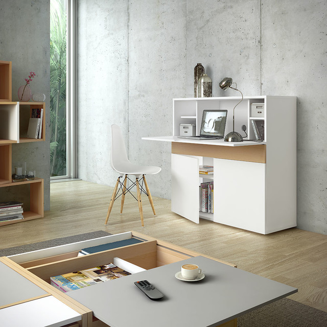 Focus Hidden Home Office Contemporary Home Office Library