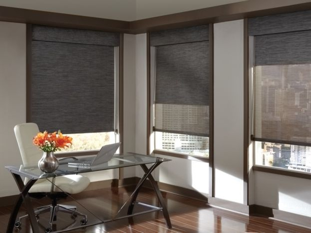 Hunter Douglas Roller Shades Modern