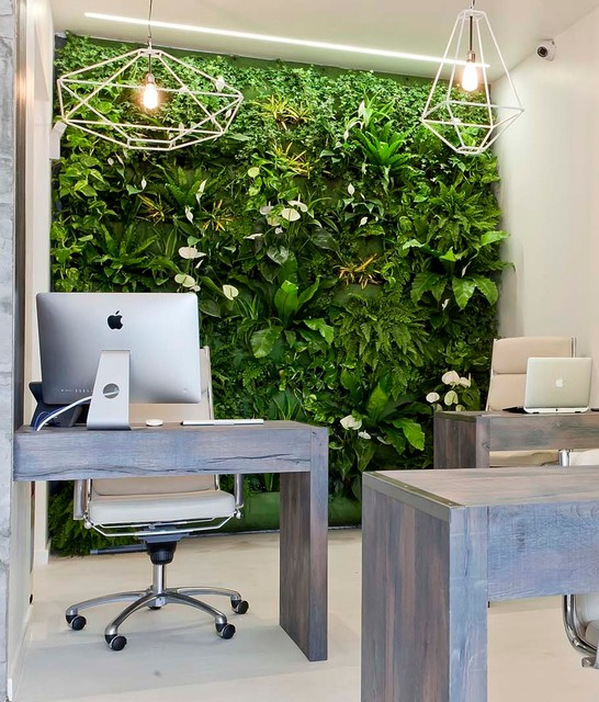Living Wall, Stoke Newington, London Contemporary Home Office And Library