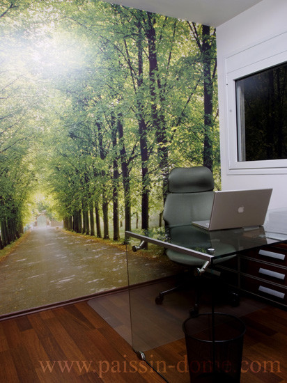 PAISSIN interior design modern-home-office