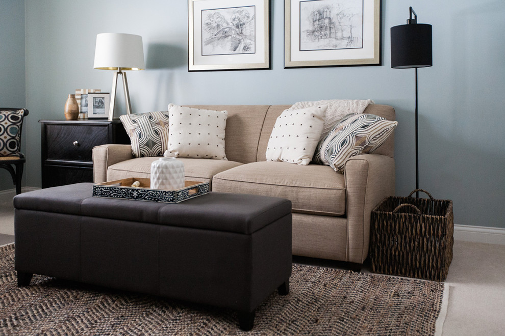 Sofa Bed and storage ottoman