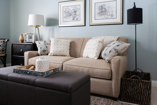 sofa bed and wall art Transitional Home fice Indianapolis by Susan Rudd Designs