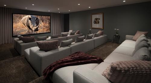 Cinema Room With Rhino On Screen