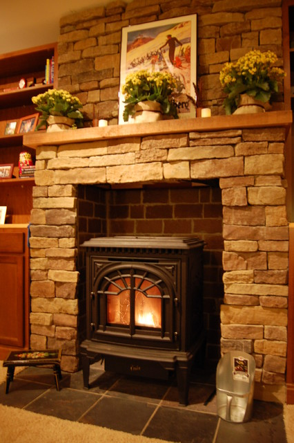 Pellet Stove - Traditional - Home Theater - Baltimore - by Day or Night Home and Hearth Services