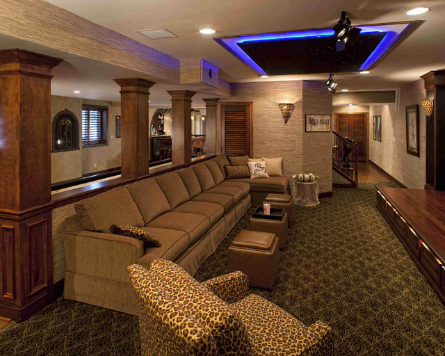 Performance Theater contemporary-home-theater