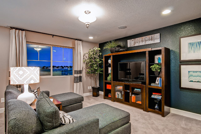 The Telluride- Oakwood Homes contemporary-home-theater