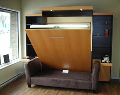 TV on Murphy Bed contemporary-home-theater