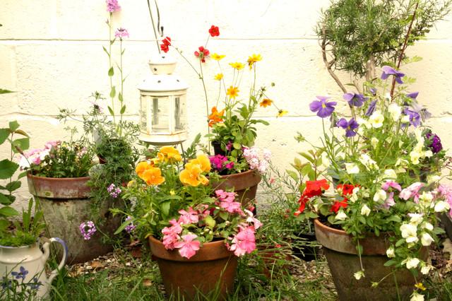 garden studio eclectic-exterior
